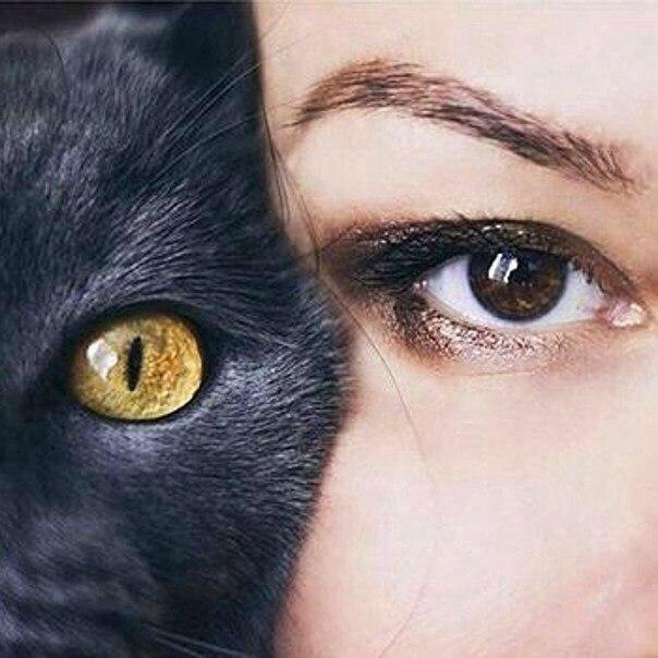 Глаза - это зеркало души!..