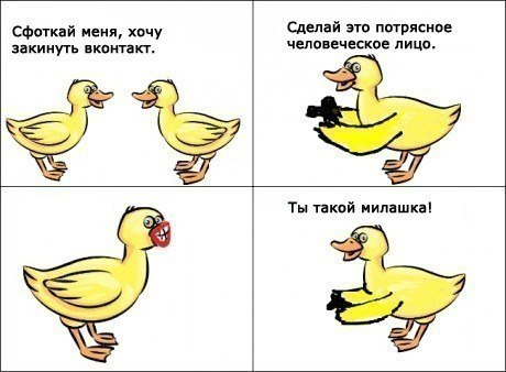 http://cs320321.vk.me/v320321969/10b/CEei3fcYMxs.jpg