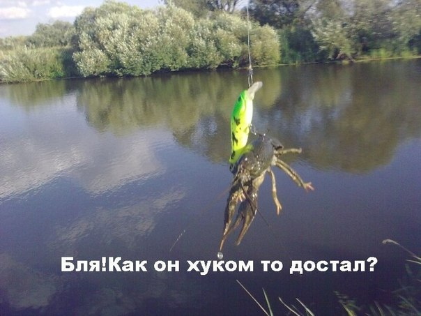 Dota 2 UA [Приколы , Видео , Музыка] | VK: https://vk.com/dota2_ua