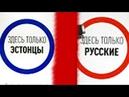 В Эстонии разделили людей на русских и эстонцев