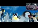 55videoomsk У нас только позитивные новости! Сегодня • День обучения танцам пингвинов. И до лета осталось всего 141 день :-