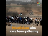 Over 50 Palestinians have been murdered just within one day as protests against the U.S.