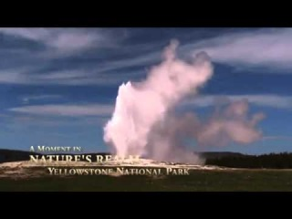 Йеллоустонский национальный парк.Гейзер.( Yellowstone National Park)
