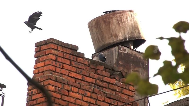 Сюжет ТСН24 Более 250 тульских семей переедут в новые квартиры в следующем году