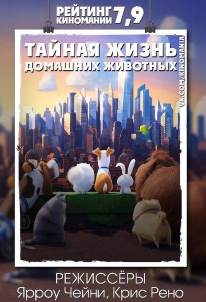 Фото №427370625 со страницы Евгения Мартынова