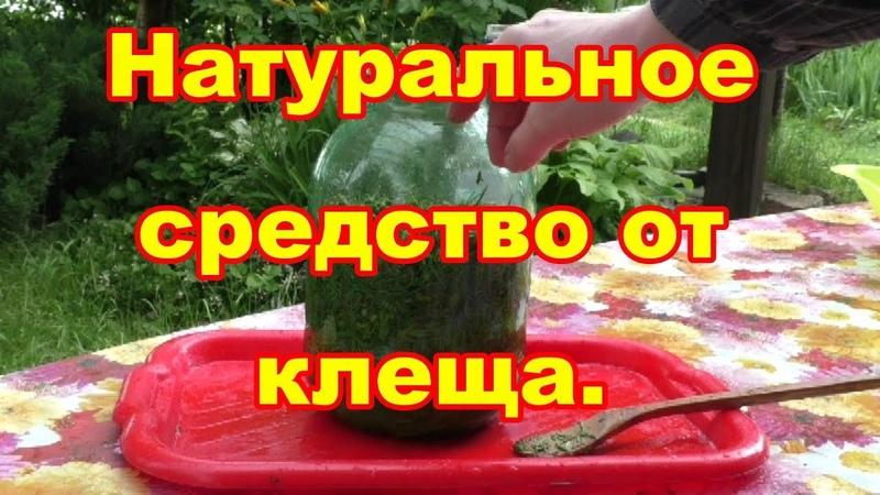 Самодельный НВ -101 волшебное средство от вредителей и болезней растений