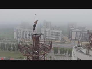 В воронеже девушка станцевала на пиллотроне на высоте 80 метров!