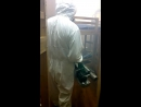 Дезинсекция(уничтожение клопов) горячим туманом