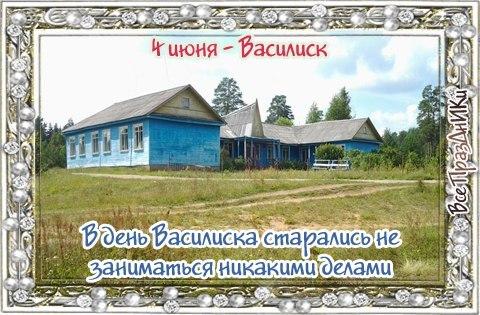 http://cs14114.vk.me/c7008/v7008719/2d6b2/fZZdEM6lyog.jpg