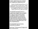 Шейль Альбани про Саудию