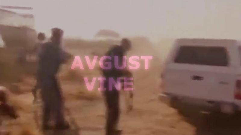 Avgust Vine