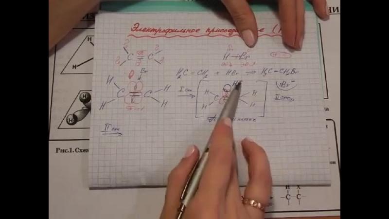 Алкены. Механизм реакции электрофильного присоединения.
