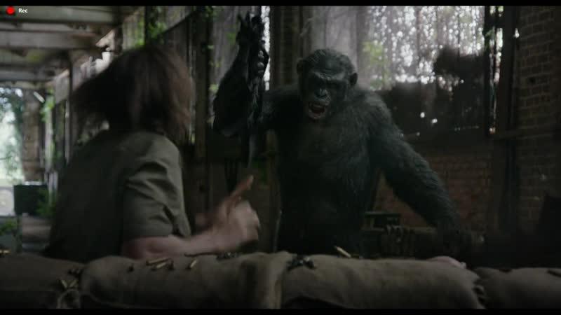 Свойский чувак. Планета обезьян Революция