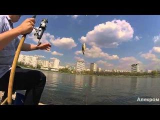 С весенним фидером на Гольяновском пруду