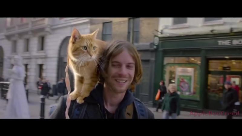 Уличный Кот По Имени Боб - Русский Трейлер 2017 _ A Street Cat Named Bob