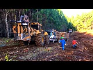 Big timber trucks