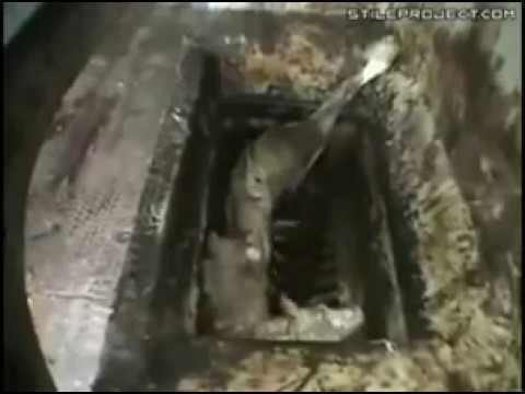 Производство сосисок