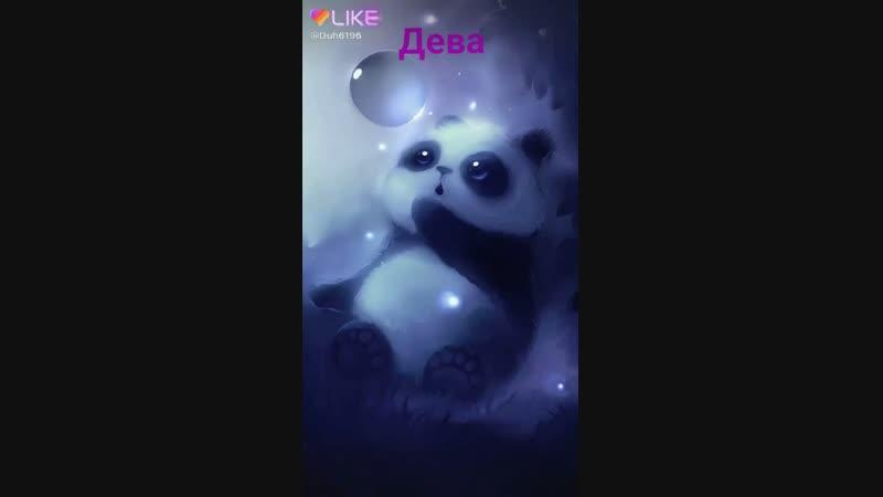 Like_6651219139484324302.mp4