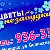 Цветы Иваново  Салон Незабудка