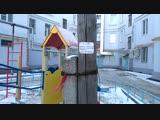 В зоне электромагнитного поля оказались самые маленькие жители Самары