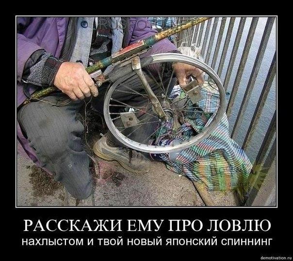 http://cs406926.vk.me/v406926404/a885/HAnc6eqI6Ag.jpg