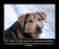 Сергей Никитович, 15 октября , Нежин, id142941818