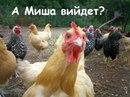 Тимур Мацевик из города Тимашевск
