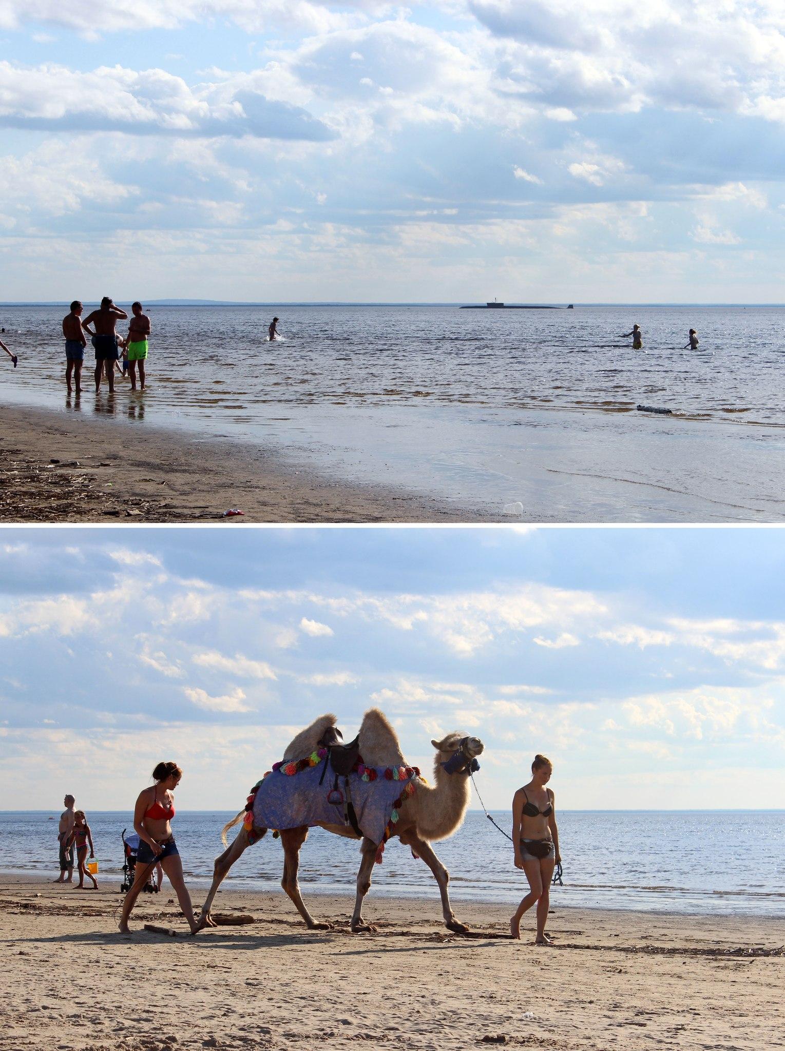 Белое море фото на пляже