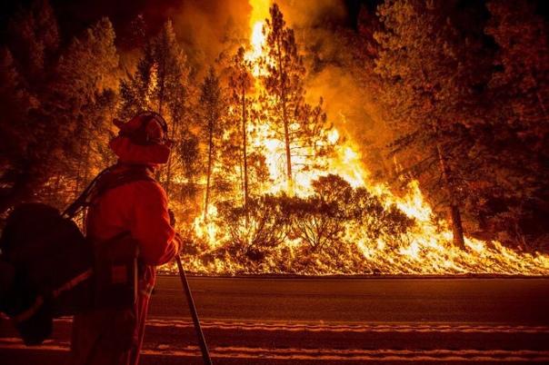 Калифорния в огне. В Калифорнии продолжают бушевать пожары. На севере штата погибли шесть человек. Общая площадь возгорания выросла до 35 тысяч гектаров.Местные жители спасаются от огня