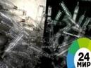 Произведения искусства из мусора МИР 24