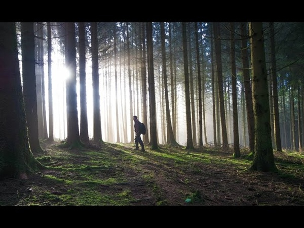 Metal detecting Ardennes Forest (SPECIAL) (25)