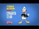 День рождения Дональда Дака на Канале Disney!