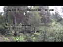 Разрешение на охоту. Получение путевки в охотхозяйство и разрешениния на добычу