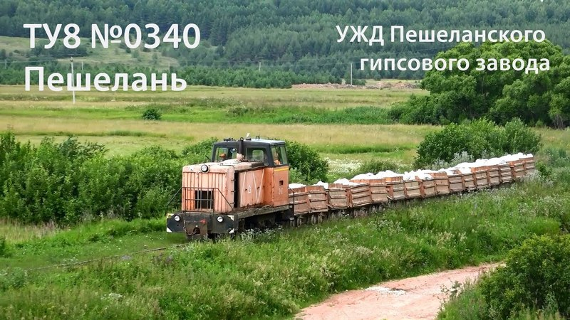 УЖД. ТУ8-0340 (Пешелань) Narrow gauge. TU8-0340 (RUS, Peshelan)
