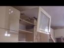 Сборка кухни Яр-дизайн