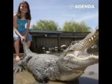 Укротительница крокодилов