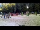 Кінні змагання в парку Топільче, Тернопіль 27.08.2013