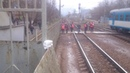 Переход на станции Подлипки дачные в Королеве закрыли заварили На следующий день спилили