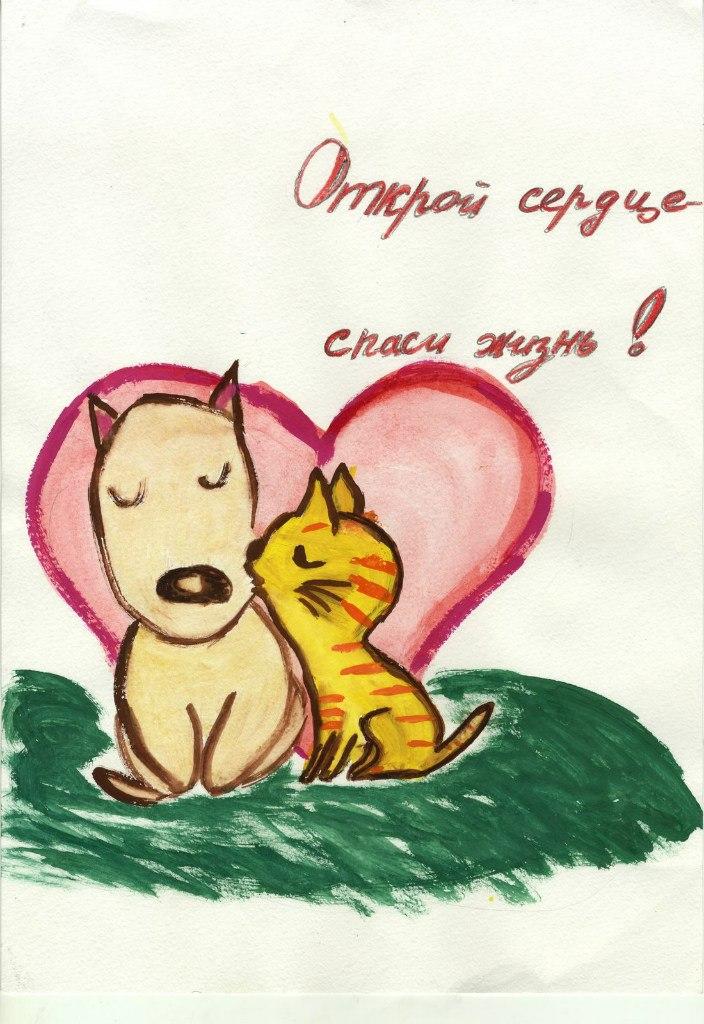 http://vk.com/photo-43397862_315580819