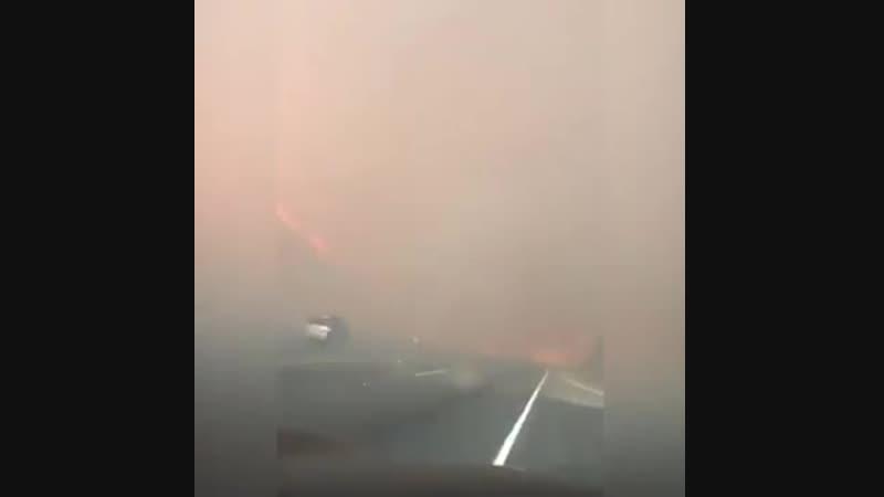 Русские в Калифорнийском пожаре
