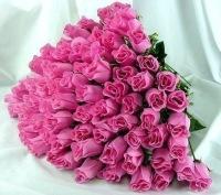 Купить розы в твери дешево цветы на дом пермь доставка заказать