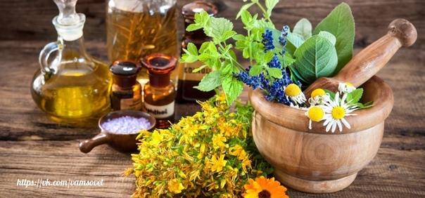 Cкороя помощь без лекарств со своего огорода