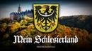 """✠ """"Mein Schlesierland Instrumental ✠"""