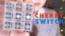 ASMR Cherry Switch (Mechanical Blue, Brown, Red, Black, Green, White, Clear, Grey Key Switch Sounds)