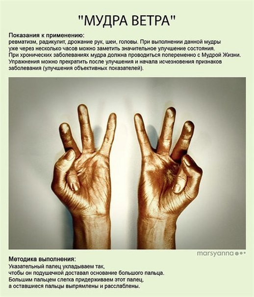МУДРЫ - ЙОГА ДЛЯ ПАЛЬЦЕВ YZV4NcY8JM8