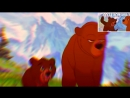 Братец Медвежонок RYTP