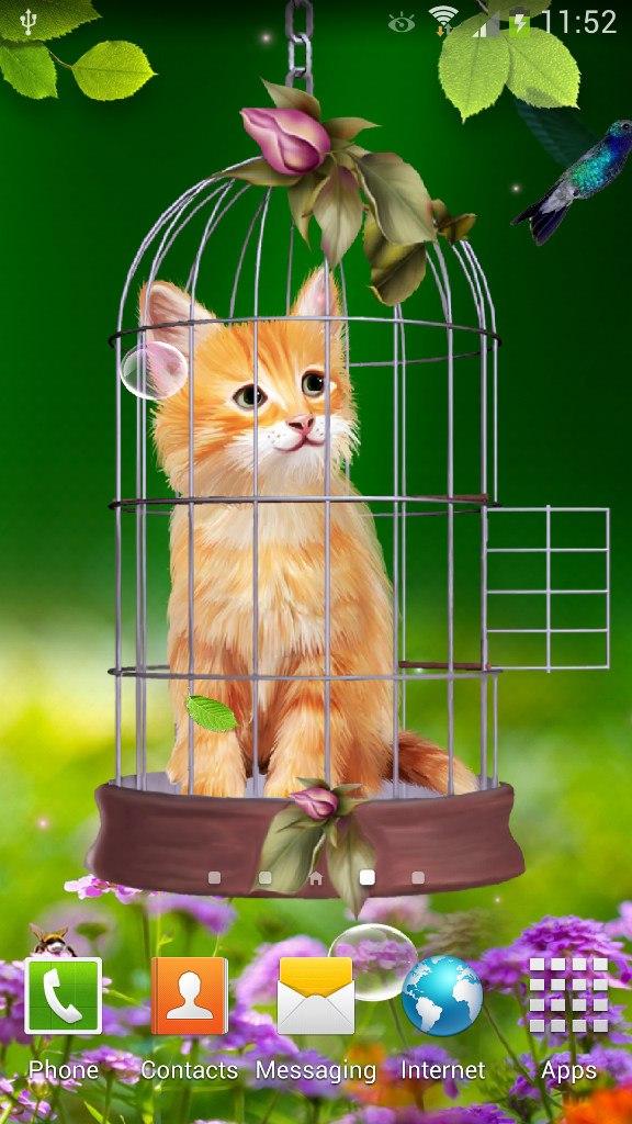 Цифровая колибри и котенок - живые обои