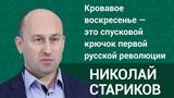 Николай Стариков Кровавое воскресенье это спусковой крючок первой русской революции. ФАН-ТВ
