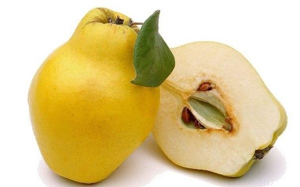 Ароматная айва - прекрасное лекарство! - Плоды применяют как мочегонное, вяжущее, кровоостанавливающее и антисептическое средство.- Семена - как мягчительное, обволакивающее, антисептическое и