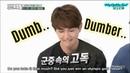 SHINee 'Dumb Dumber' Dissing Bullying etc